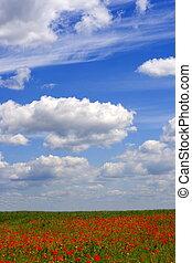 landscape - beauty landscape
