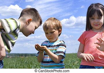 three children  - children on a meadow