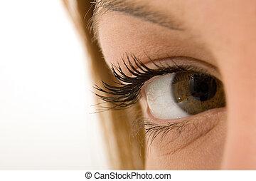 An eye - A closeup of an eye