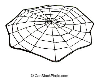 Spider Web - A handmade Spider web made out of thread, over...