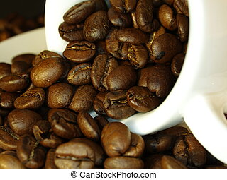 Coffee beans - Close-up og coffee-beans in a cup