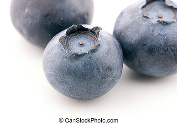 Blueberries against a white background