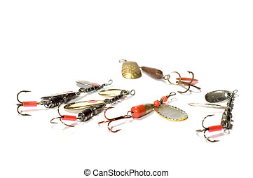 minnow - series object on white: isolated -minnow