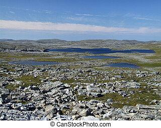 Rocky plains and lakes landscape