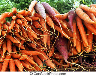 bunches of carrots at farmer\\\'s market