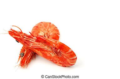 Shrimps pair 3 - A pair of shrimps over white background