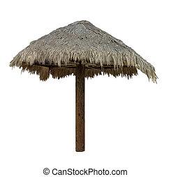 Palapa, cubierto con paja, paraguas, -, aislado