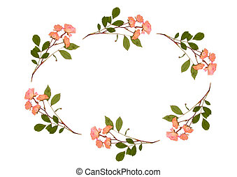 Oval of Roses - Oval arrangement of dried pressed pink roses...