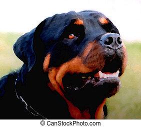 watching dog purebre mastiff rottweiler