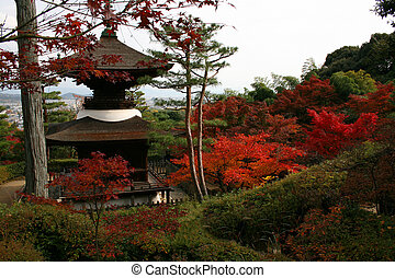 Japanese shrine during colorful autumn