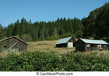 Mountain barns - On one of the backroads in the foothills of...
