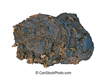 Cowpat - Isolated dung of a cow with clipping path