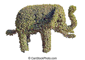 Topiary elephant - A topiary hedge in the shape of an...