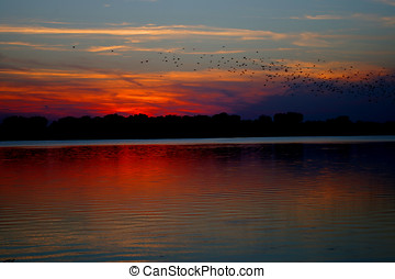 Country lake sunset - Rural lake sunset