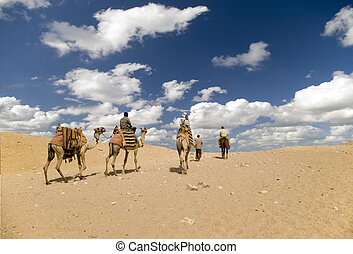 Desert walk - Camel ride and walk true the Sahara desert