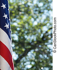 United States flag - US flag with tree in background