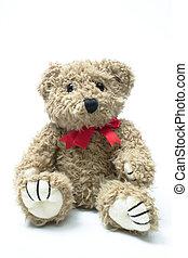 Teddybear - Isolated teddybear