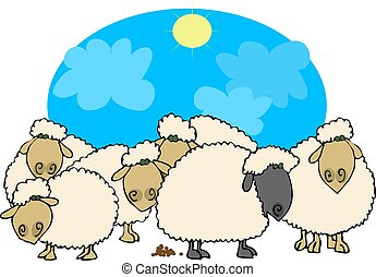 Black sheep - This illustration depicts 5 white sheep & one...