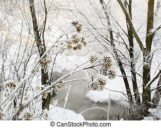 frosty day with the - Winter landscape in frosty day with...