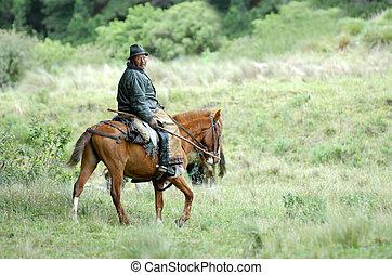the latin horseman (gaucho). ecuador. south america