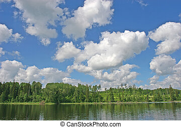 River in the summer - Photo of the river under blue sky...