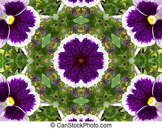 Stock image of Pansies Kaleidoscope - Unusual background...