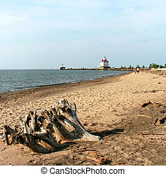 Lighthouse on Headlands beach on Lake Erie with driftwood in...