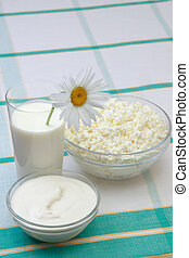 Milk, sour cream and cottage cheese in glass with daisy, on...