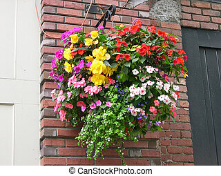Basket with plants hanging on the brick wall during the...