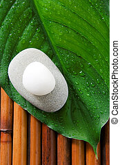 Spa still life - Two stones on a fresh green leaf Zen, spa...