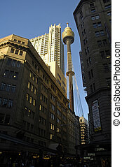 tower in Sydney, buildings in shadow, clear blue sky