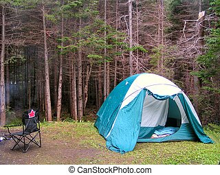 camping - a camp site in a provincial park