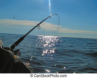 Deep sea fishing 2 - a man is deep sea fishing for cod off...
