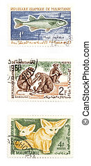 Animals post stamps