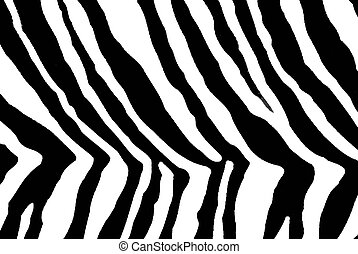 zebra print - details of a black and white animal print