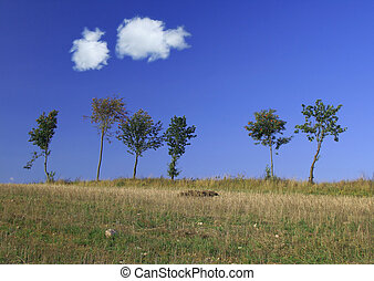 tree line with two cumulus clouds.