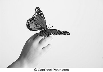 butterfly on childs hand - Beautiful butterly on a childs...