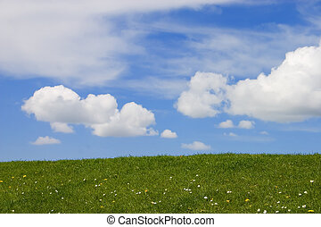 Green grass and blue sky with fluffy white clouds