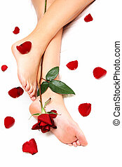Legs and Rose - Womans Legs with red rose and loose petals...