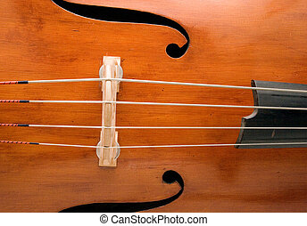 Double Bass Front - A closeup of the front of an Italian...