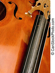 Bass Fingerboard - An angle view of a double bass...