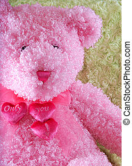 Pink teddy bear with Only You! hearts for valentines day on...