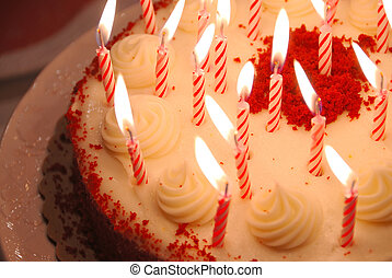 Birthday Cake Lighted Candles