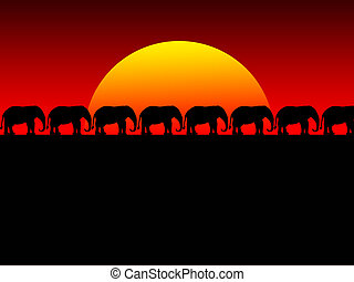 foolish sunset - sunset and elephant