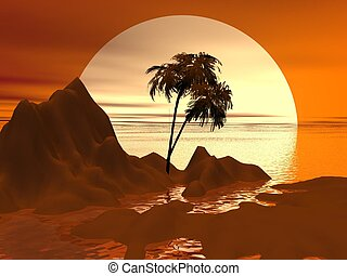 tropical - palm and sunset