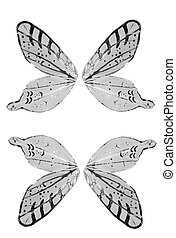 Butterfly Wings - Angel Wings Separated and Isolated