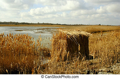 Duck Blind - Duck blind in the marsh that leads to Delaware...