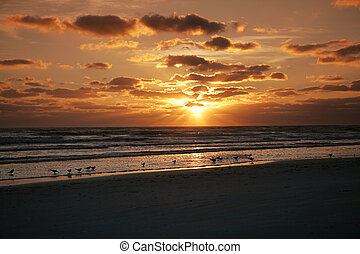Florida Sunset - A brilliant sunset over the Gulf of Mexico...