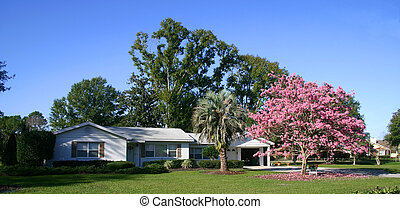 Home & Tree in Bloom - Front of a white ranch-style house...