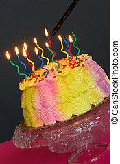 Lighting The Birthday Cake - Birthday Cake - Lighting the...
